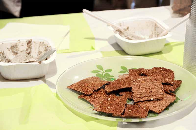 Piatto di cracker crudisti accanto a due ciotoline di cartone con all'interno una crema di semi di girasole