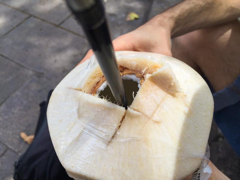 cocco giovane tagliato con cannuccia